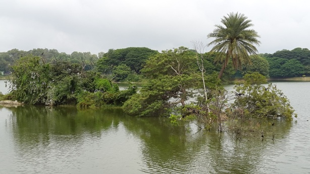 lal bagh lake